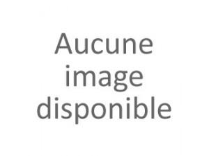 Magnum Nuits Saint Georges 1er cru Aux Champs Perdrix 2012